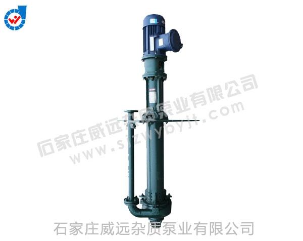 FTL长轴液下渣浆泵