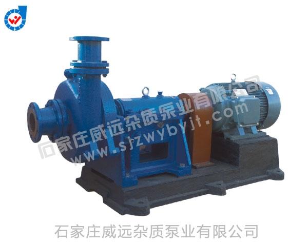 FT系列防腐脱硫泵